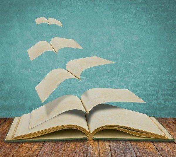 Fuente: http://espaciolibros.com/la-novela-y-los-elementos-que-la-componen/